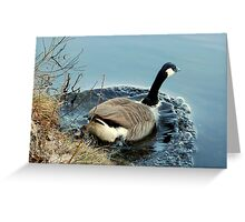 Water World - Got to Go Greeting Card