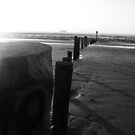 Posts, Black and white by RoseMae