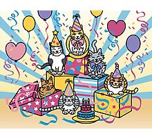 Party Cats Photographic Print