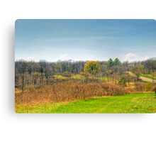Ice Age Trails Canvas Print