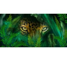 Jungle Eyes - Jaguar Photographic Print