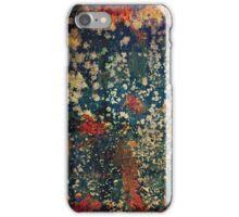 Titian iPhone Case/Skin