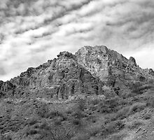 Jewels Along Titus Canyon Road- Black and White by Karen Zimmerman