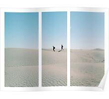 Walking in the desert Poster
