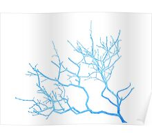 Blue Leafless Lilac Bush Poster