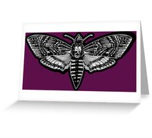 Deaths Head Moth - Silence of the Lambs Greeting Card