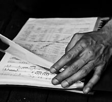 Musician's Hands by Clare Hawley