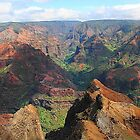 Waimea Canyon Kauai, Hawaii by Joni  Rae