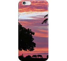 In the Quiet of the Day iPhone Case/Skin