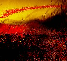 red locusts...... a warmed land by banrai