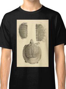 The Reptiles of British India by Albert C L G Gunther 1864 0491 Trionyx guntheri, Ornatus, Chitra Indica Turtle Classic T-Shirt