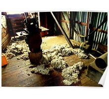 Woolen Floors Poster