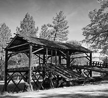 Sawmill by Michael Wolf