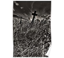 Neglected grave Poster