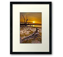 Yangebup Lake Framed Print
