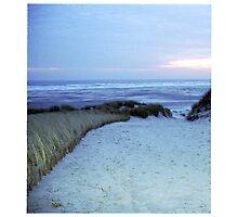 Dune at sunset Photographic Print