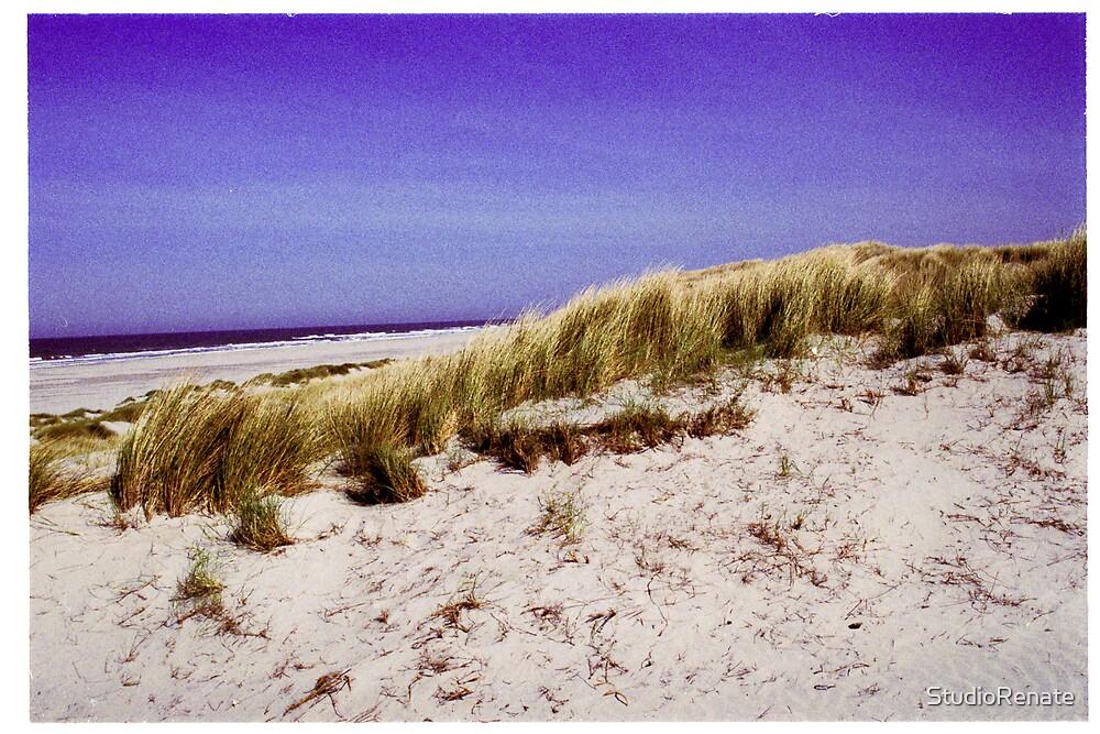 the beach by StudioRenate