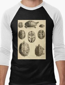The Reptiles of British India by Albert C L G Gunther 1864 0487 Cuora Amroinensis, Pangshura Tentoria, Pyxidea Mouhoutii, Emys Crassicolis Turtle Men's Baseball ¾ T-Shirt