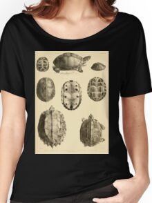 The Reptiles of British India by Albert C L G Gunther 1864 0487 Cuora Amroinensis, Pangshura Tentoria, Pyxidea Mouhoutii, Emys Crassicolis Turtle Women's Relaxed Fit T-Shirt