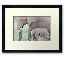 I love you Mommy! Framed Print