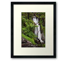 Verdant Falls  Framed Print