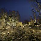 Nightland # 3 by Stefan Bau