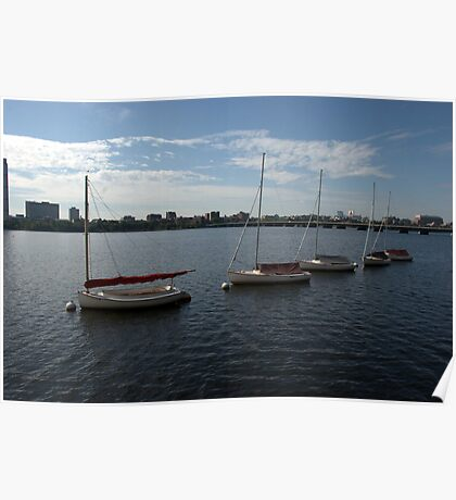 Sailboats on the Charles River Poster