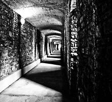 Corridor of Power by Liam Diamond