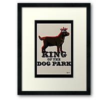 Labrador Retriever King of the Dog Park Framed Print