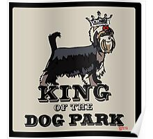 Yorkshire Terrier King of the Dog Park Poster
