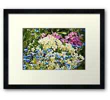 A Waiting Game: Primroses and Forget-me-nots Framed Print