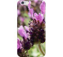 Fathead Lavender iPhone Case/Skin