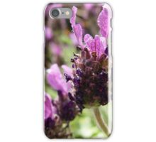 Fathead Lavender iPhone Case/Skin
