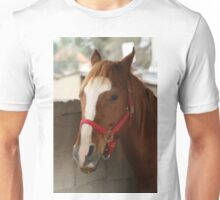 Horse In Stable Unisex T-Shirt