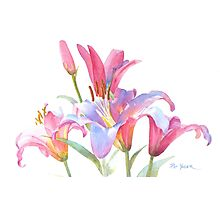 Watercolor Lilies Photographic Print