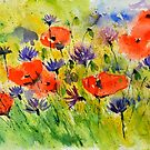 Poppies 5170 by calimero