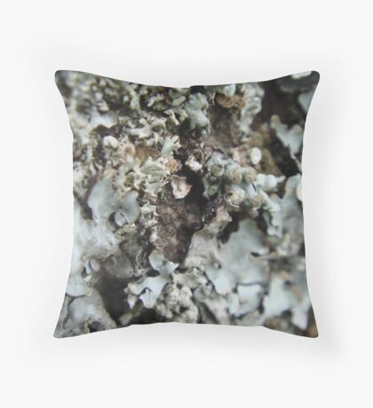 Can You See What It Is Yet? Throw Pillow