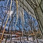 Cabin Fever With Icicles by Rick Gold