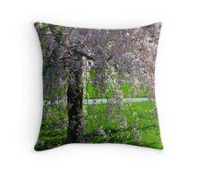 Blossom Tree, Berks County, PA, 2010 Throw Pillow