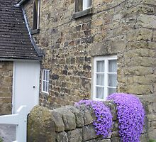 cottage at Cauldwell's Mill by monkeyferret