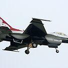 Thunderbird by redscorpion