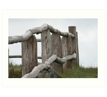 Old fence Art Print