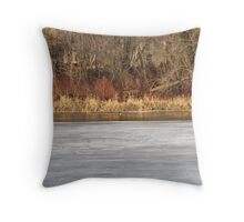 The Geese are Back- Spring is Here! Throw Pillow