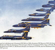 Blue Angels 1946 - 2004 by John Schneider