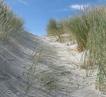 What's over the dune? by beachbumma