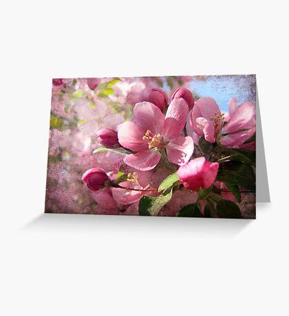 Pink Dreamland Greeting Card