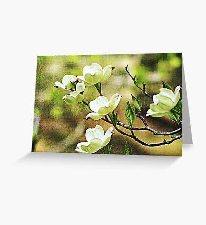 Splendid Spring Greeting Card