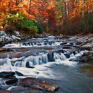 Toccoa Falls - Downstream by Michael  Bermingham