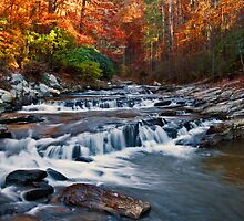 Toccoa Falls - Downstream by Michael  Bermingham