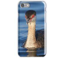Red Eyes & Blue Water iPhone Case/Skin